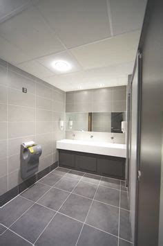 Commercial office bathroom and toilet. Disabled access