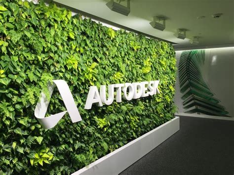 Ideas Green Walls by Green Walls In Office Spaces Green Walls