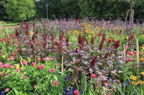 Britzer Garten Mohringer Allee by Saisonbepflanzungen In Der Mohriner Allee B 252 Ro Christian