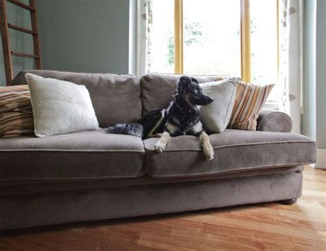 what is a loveseat sofa vs sofa definition and sofa definition