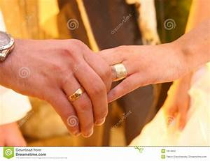 two hands with wedding rings stock image image 1814853 With wedding rings on hands photos