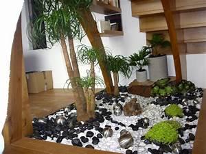 best petit jardin interieur ideas seiunkelus seiunkelus With petit jardin d interieur