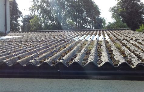 asbestos ceilings roofs advance asbestos removal