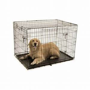 precision pet provalu2 42 by 28 by 30 inch 2 door crate With precision dog crate 5000