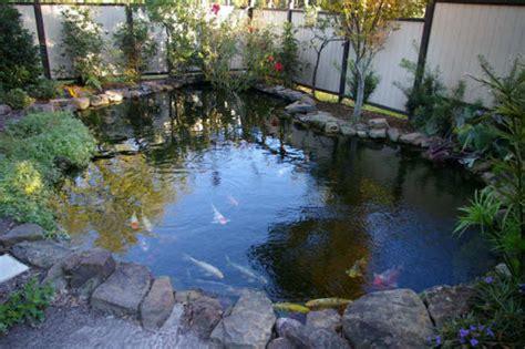 coy fish pond designs coy fish pond design bookmark 2242