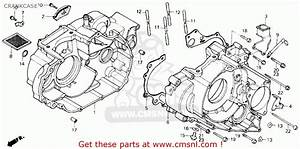 Honda Trx250 Fourtrax 250 1987 Usa Crankcase