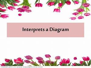 Interpreting A Diagram
