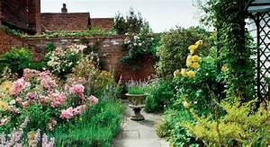 Small garden design ideas and plants ~ English garden