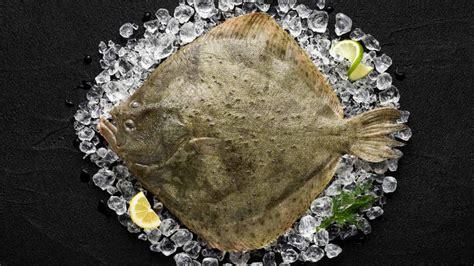 cucinare rombo pesce rombo