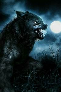 Pin by Jenn Zieska on Werewolves, Lycanthropy and Shifters ...