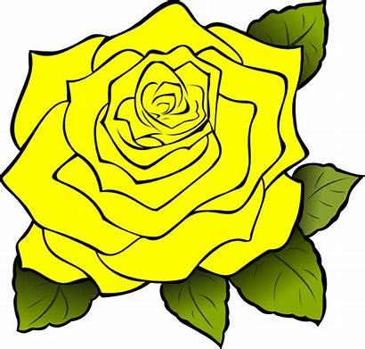 Yellow Rose Clip Clipart Border Vector Texas