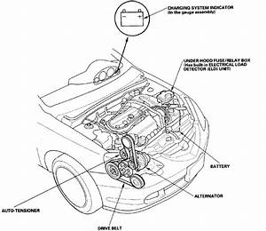 How To Install Serpintine Belt 2002 Acura Rsx S Type