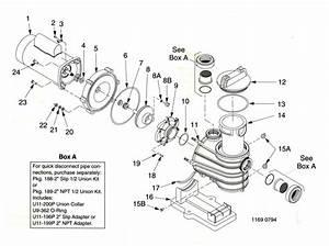 Tri Star Pool Pump Wiring Diagram