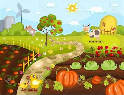 Garden Vegetable Drawing Farm Clipart Drawings Harvest