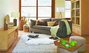 Salon Gris Et Bois : decoration salon gris et bois ~ Melissatoandfro.com Idées de Décoration