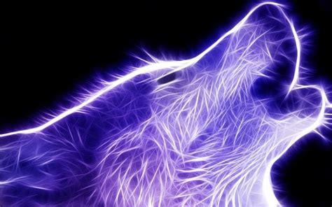 Cool Animal Wallpaper Light Wolf - fond d 233 cran cat 233 gorie loups