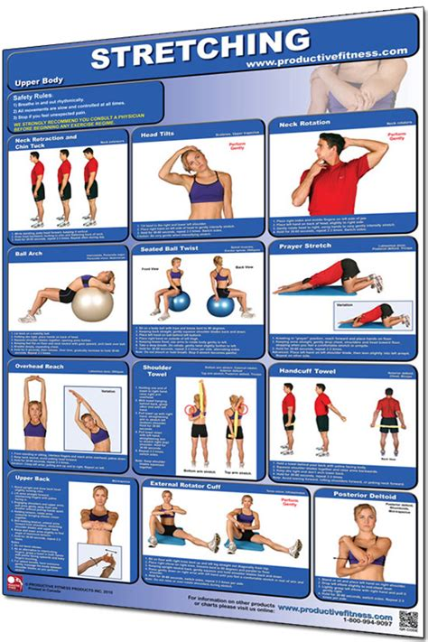 """Slide your finger tips up your palm so the tips of your fingers are near the base of your fingers and you should feel a stretch. Productive Fitness 24"""" x 36"""" Laminated Fitness Poster / Wall Chart - Stretching (CSL)"""