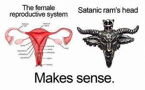 The Female Reproductive System vs Satanic Rams Head ...