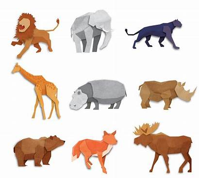 Origami Animals Vector Pack Animal Vectors Card