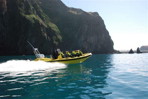 Rib Boat Westman Islands by Vestmannaeyjar Transfer Flight Rib Safari Boat Tour