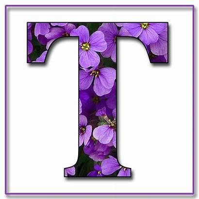 Purple Alphabet Flowers Scrapbook Letter Letters Flower