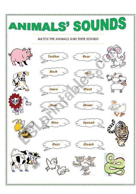 animals sounds esl worksheet  trisnagt