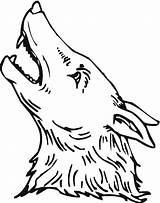Coyote Coloring Pages Howling Drawing Easy Printable Template Cartoon Wolf Head Draw Loon Animals Wildlife Hockey Sitting Sketch Getcoloringpages Clipartmag sketch template