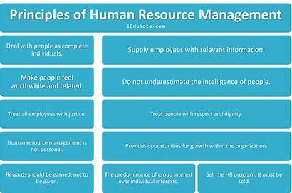 Principles Management Human Resource Manager Relations Fayol