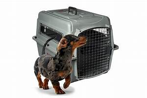 sky kennels dog crates internationally approved for With cheap dog travel crates