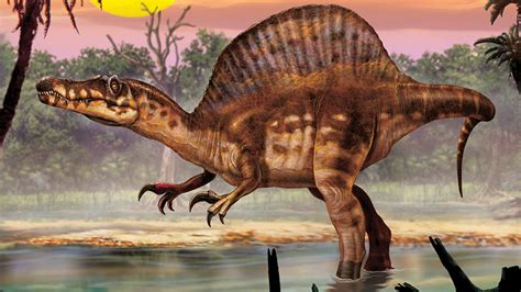 Spinosaurus Profile Picture And Facts