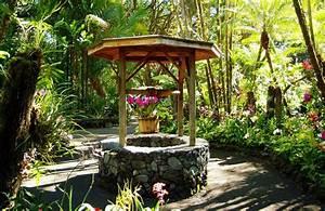 Hilo botanical gardens garden ftempo for Hilo botanical gardens