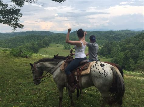 farm nc trail asheville rides smokey mountain bison riding horseback near smoky browse