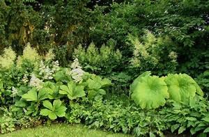 Pflanzen Für Schattengarten : staudengarten gross potrems gartenrundgang im juli ~ Sanjose-hotels-ca.com Haus und Dekorationen