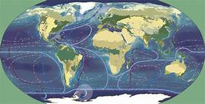 Climate Change Deforestation Biomes And Ocean Currents
