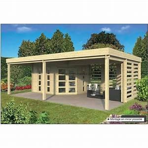 Cabane En Bois De Jardin : cabane de jardin toit plat oletha 40m2 chalet en bois pas cher ~ Dailycaller-alerts.com Idées de Décoration
