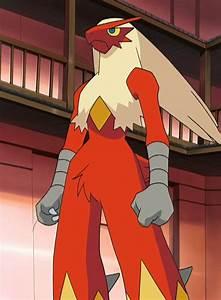 May's Blaziken - Bulbapedia, the community-driven Pokémon ...