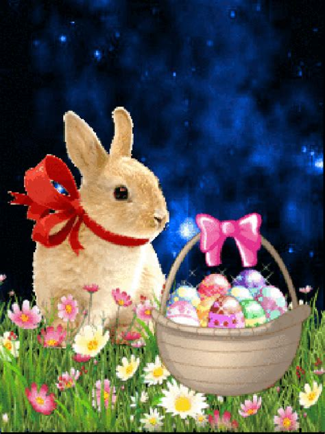 easter bunny pictures   images  facebook