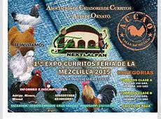 EXPO CURRITOS FERIA DE LA MEZCLILLA at Santa Ana
