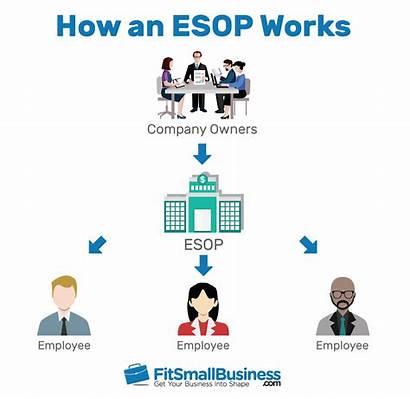 Esop Plan Ownership Employee Employees Business Benefits