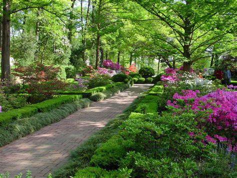 national arboretum garden washington
