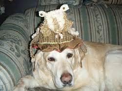 goat borrower darlas number   finally  girl