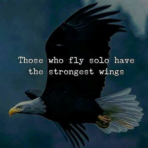 fly solo   strongest wings pictures
