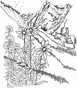 Coloring Landscape Pages Adults Detailed Prairie Landscapes Printable Nature Landscaping Flowers Bulkcolor Guardado Desde sketch template
