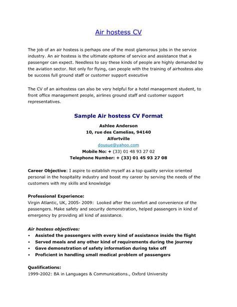 sample resume  aviation industry sample resume
