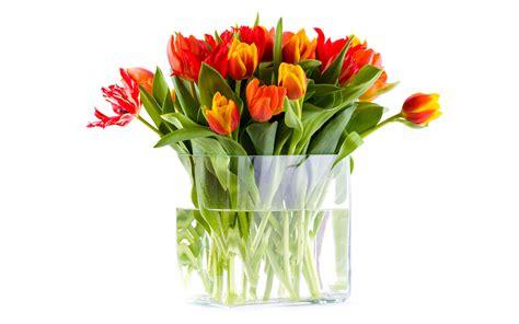 flower vase part  weneedfun