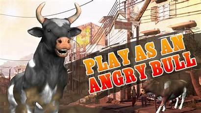 Bull Angry Attack Shooting Fighting Wild Games