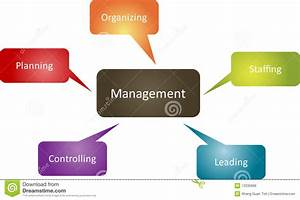 Management Function Business Diagram Stock Illustration