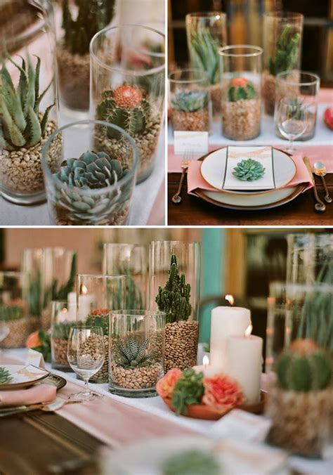 Give Me The Succulents Home Stuff In 2019 Cactus