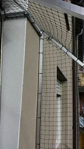 balkon mit markise katzensicher vernetzt katzennetze With markise balkon mit tapeten lagerverkauf nrw