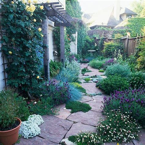 Side Yards, Drought Tolerant And Yards On Pinterest
